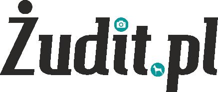 cropped-zudit_logo