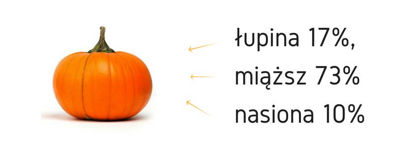 lupiny-17-miazszu-73-i-nasion-10