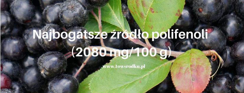 najbogatszym-zrodlo-polifenolinajwyzsza-zawartosc-zwiazkow-polifenolowych-odnotowano-w-owocach-aronii-2080-mg%2f100-g