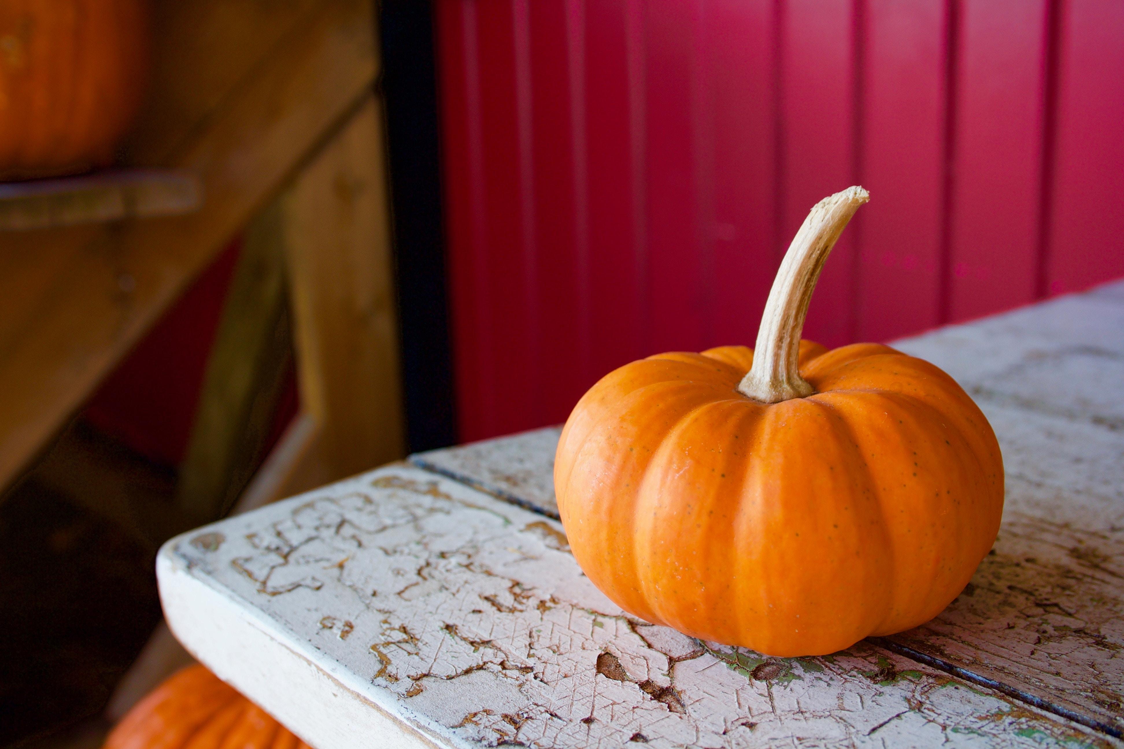 Przyszła jesień! Poznaj właściwości dyni!