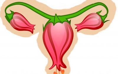 Jak poprawić cienkie endometrium dietą